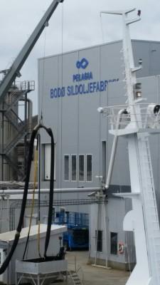 Pelagia Bodø Sildoljefabrikk